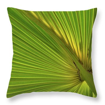 Throw Pillow featuring the photograph Palm Leaf II by JD Grimes