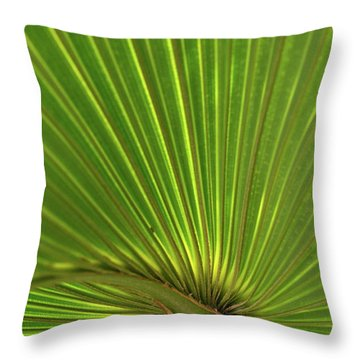 Throw Pillow featuring the photograph Palm Leaf by JD Grimes