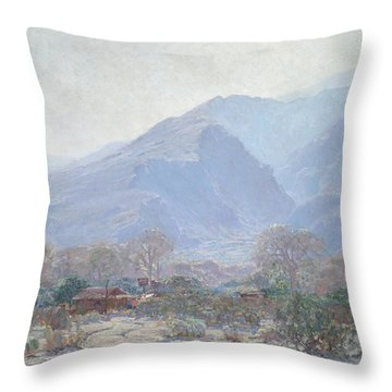 Palm Springs Landscape With Shack Throw Pillow by John Frost