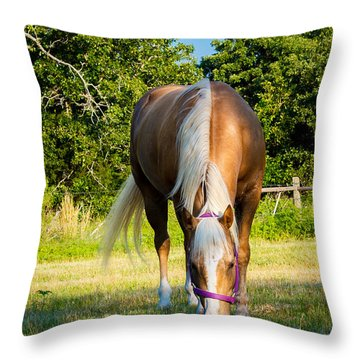 Palomino Throw Pillow by Doug Long