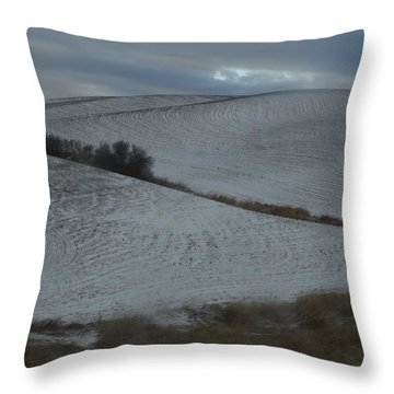 Palouse Winter 1 Throw Pillow by Mary McInnis