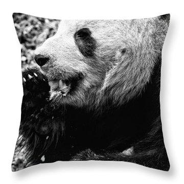 Panda Bear Eating Ice Cream Throw Pillow