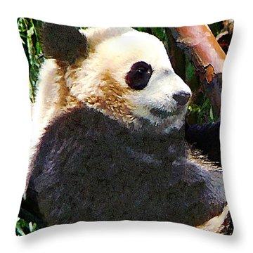 Panda In Tree Throw Pillow by Susan Savad