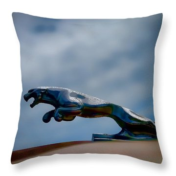 Panther Hoodie Throw Pillow by Douglas Pittman