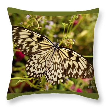 Throw Pillow featuring the photograph Paper Kite Butterfly by Eva Kaufman