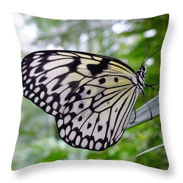 Paper White Throw Pillow