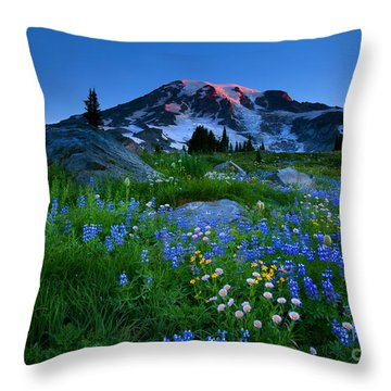 Paradise Garden Dawning Throw Pillow by Mike  Dawson
