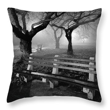 Park Benches Throw Pillow by Gary Heller