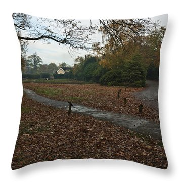 Throw Pillow featuring the photograph Park Cottage 2 by Maj Seda