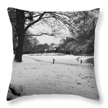 Throw Pillow featuring the photograph Park Cottage by Maj Seda