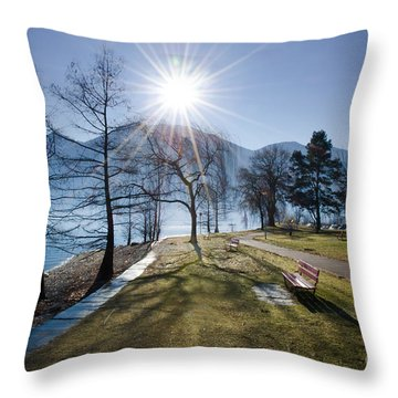 Park On The Lakefront Throw Pillow