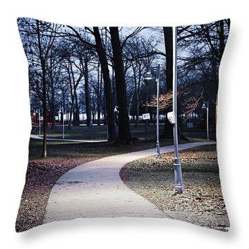 Park Path At Dusk Throw Pillow by Elena Elisseeva