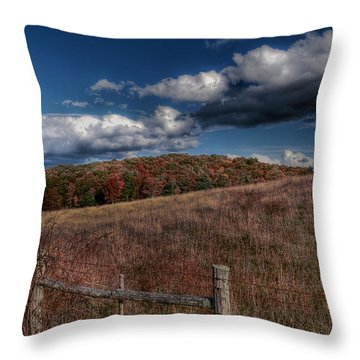 Parkway Fence Throw Pillow by Todd Hostetter