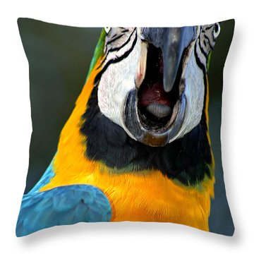 Parrot Squawking Throw Pillow by Carolyn Marshall