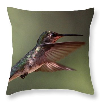 Partial Shade For The Ruby- Throated Hummingbird Throw Pillow by Travis Truelove