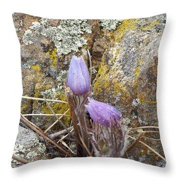 Pasque Flowers Throw Pillow