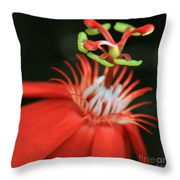 Passiflora Vitifolia - Scarlet Red Passion Flower Throw Pillow by Sharon Mau