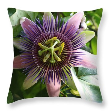 Passion Flower 2 Throw Pillow by Bruce Bley