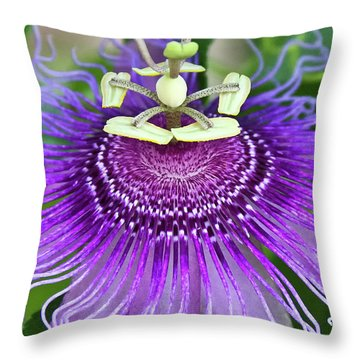 Throw Pillow featuring the photograph Passion Flower by Albert Seger