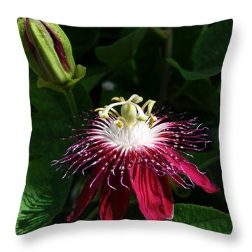 Passion Flower Throw Pillow by Eva Kaufman