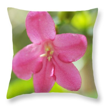 Passion For Flowers. Sweetie Throw Pillow by Jenny Rainbow