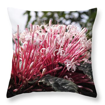 Throw Pillow featuring the photograph Passion For Pink by Gary Dean Mercer Clark