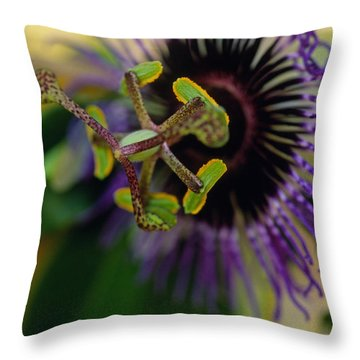 Passionate Flower Throw Pillow by Kathy Yates