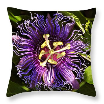 Passionflower Throw Pillow by David Lee Thompson