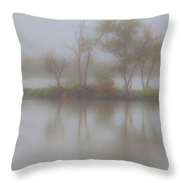 Pastel Throw Pillow by Mark Alder