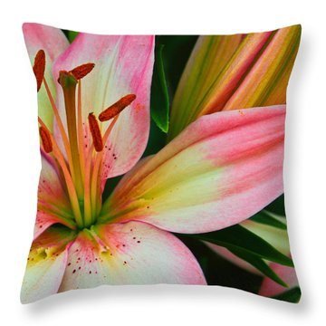 Pastel Pretty Throw Pillow by Lynne Jenkins