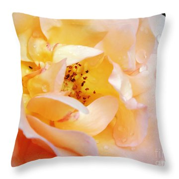 Pastel Rose Throw Pillow by Kaye Menner