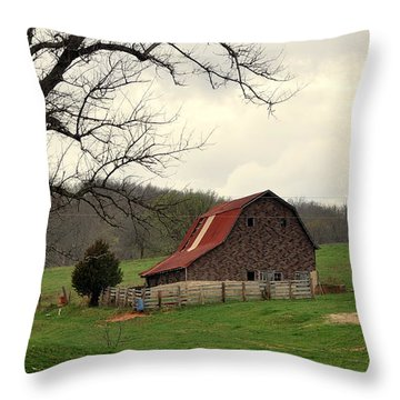 Pasture And Bar  Throw Pillow by Marty Koch