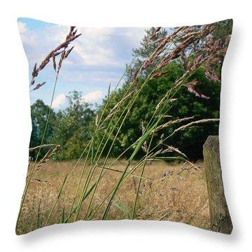 Pasture Grass Throw Pillow by Pamela Patch