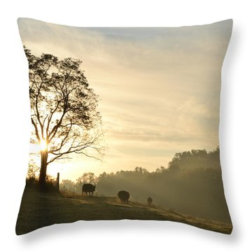 Throw Pillow featuring the photograph Pasture Sunrise by JD Grimes