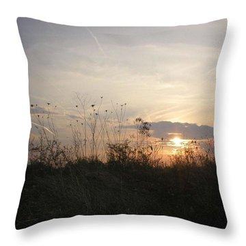 Pasture Sunset Throw Pillow