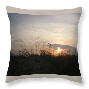 Pasture Sunset Throw Pillow