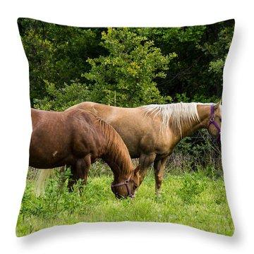 Pasture Time Throw Pillow by Doug Long