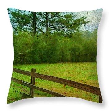 Pastureland Throw Pillow by Judi Bagwell