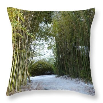 Path In Bamboo Field Throw Pillow by Renee Trenholm