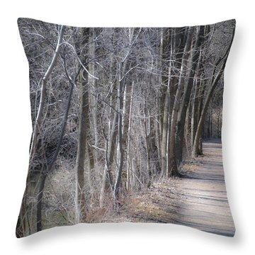 Path-ology Throw Pillow