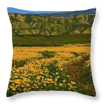 Path Through The Wildflowers Throw Pillow