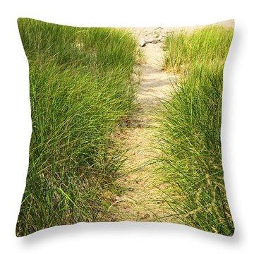 Path To Beach Throw Pillow by Elena Elisseeva