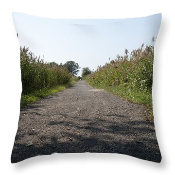 Path To The Bay Throw Pillow