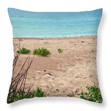 Pathway To The Beach Throw Pillow by Sandi OReilly