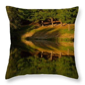 Patterns Of Nature Throw Pillow by Karol Livote