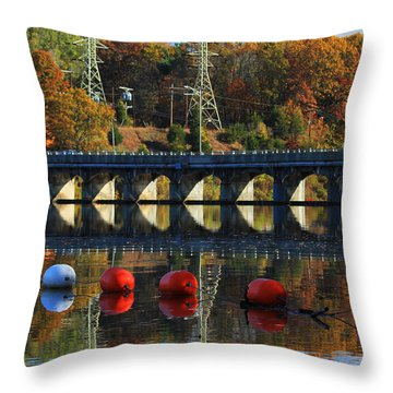 Patterns Of Reflection Throw Pillow by Karol Livote