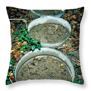 Pcb Eating Microbes Throw Pillow by DOE / Science Source
