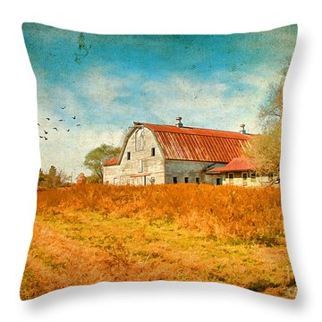 Peaceful Day's Throw Pillow by Darren Fisher