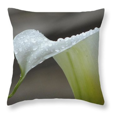 Throw Pillow featuring the photograph Peaceful Moments by Tiffany Erdman