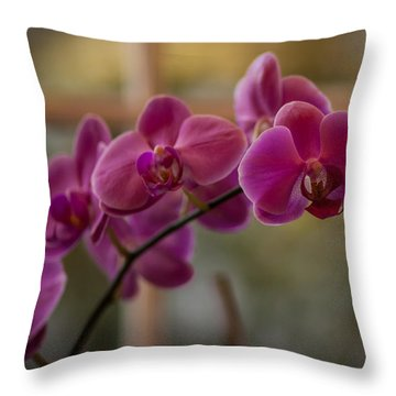 Peaceful Orchids Throw Pillow by Mike Reid